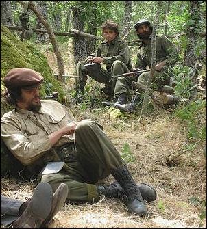 Benecio del Toro as Che Guevara